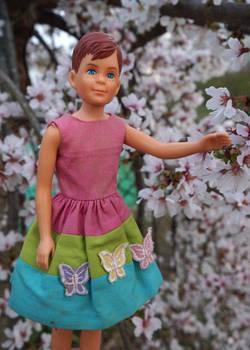 Sakura in the Spring