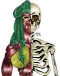 Anatomy Study 2020