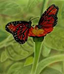 Beautiful Butterflies by AngelasPortraits