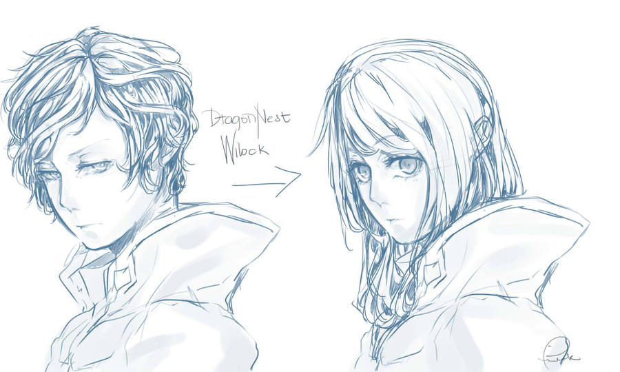 Dragon Nest Hairstyle By PrinceWilock