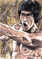Bruce Lee PSC by tdastick