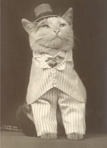 Tickkid's Profile Picture