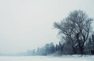 Come neve fredda scenderei by Silviaa92