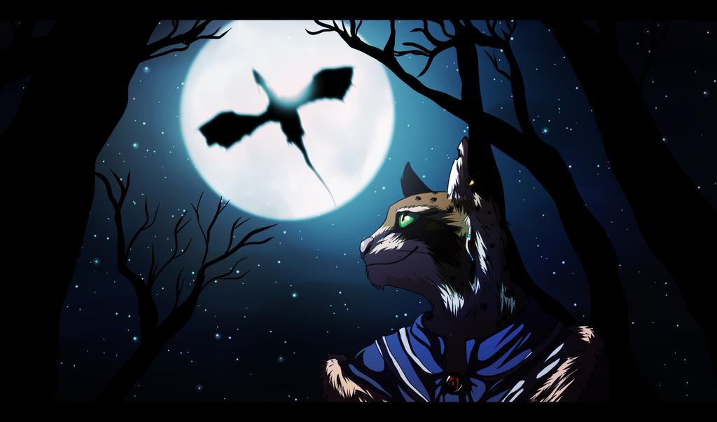 quiet night by BlackDema