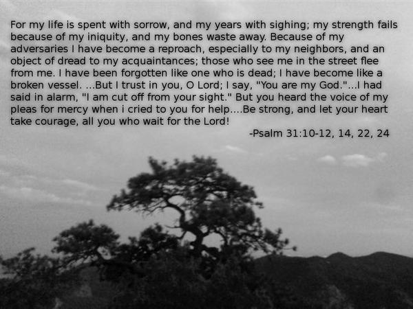 Proverbs 31 background by piepiepie12345667890 on DeviantArt