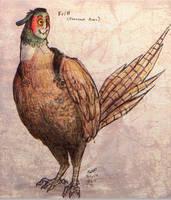 Pheasant Aves by Jackarais