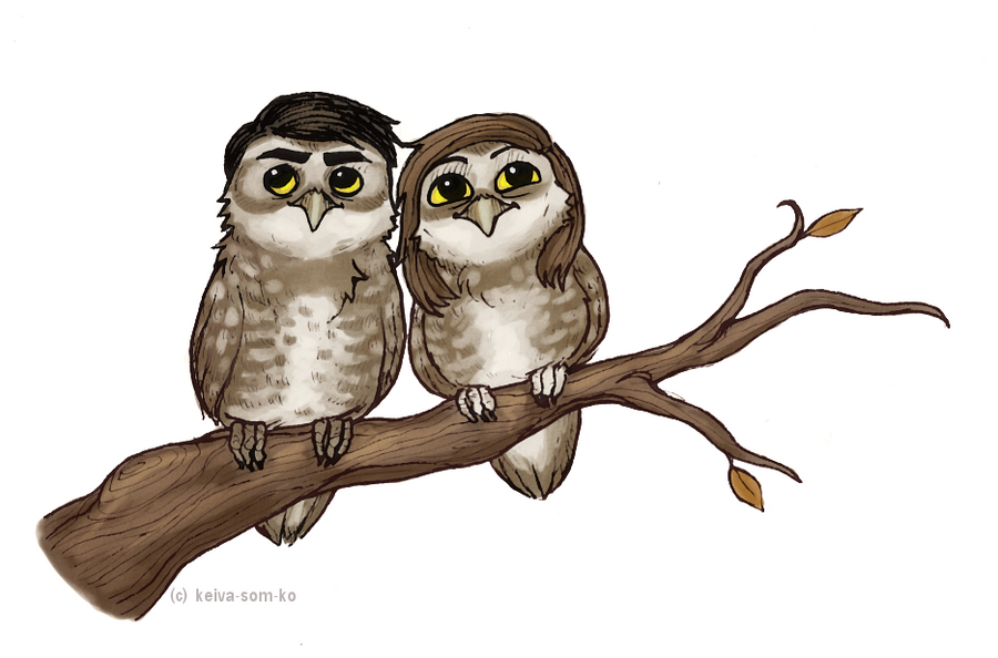 Owls are pretty cool by jackarais on deviantart for Cool drawings of owls