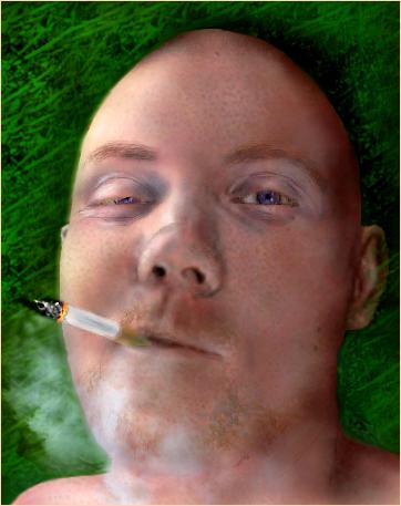 http://fc04.deviantart.com/fs30/f/2008/150/7/e/Sven_by_vvalter.png