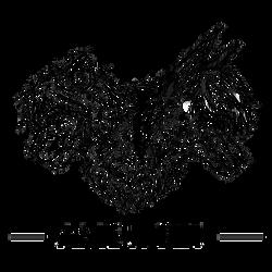 Ame X Rei Logo