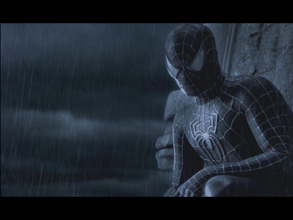 Spiderman 'Darkness' by Indel