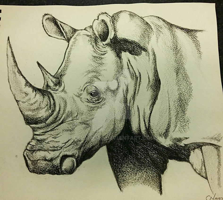 Rhino #1 by clvmoore