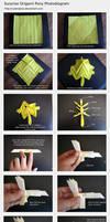 Surprise Origami Pony Photodiagram