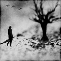 the sleepwalker by latoday
