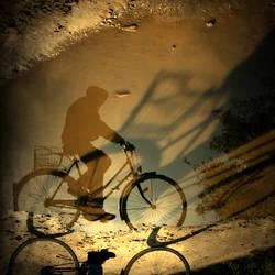 follow your shadow