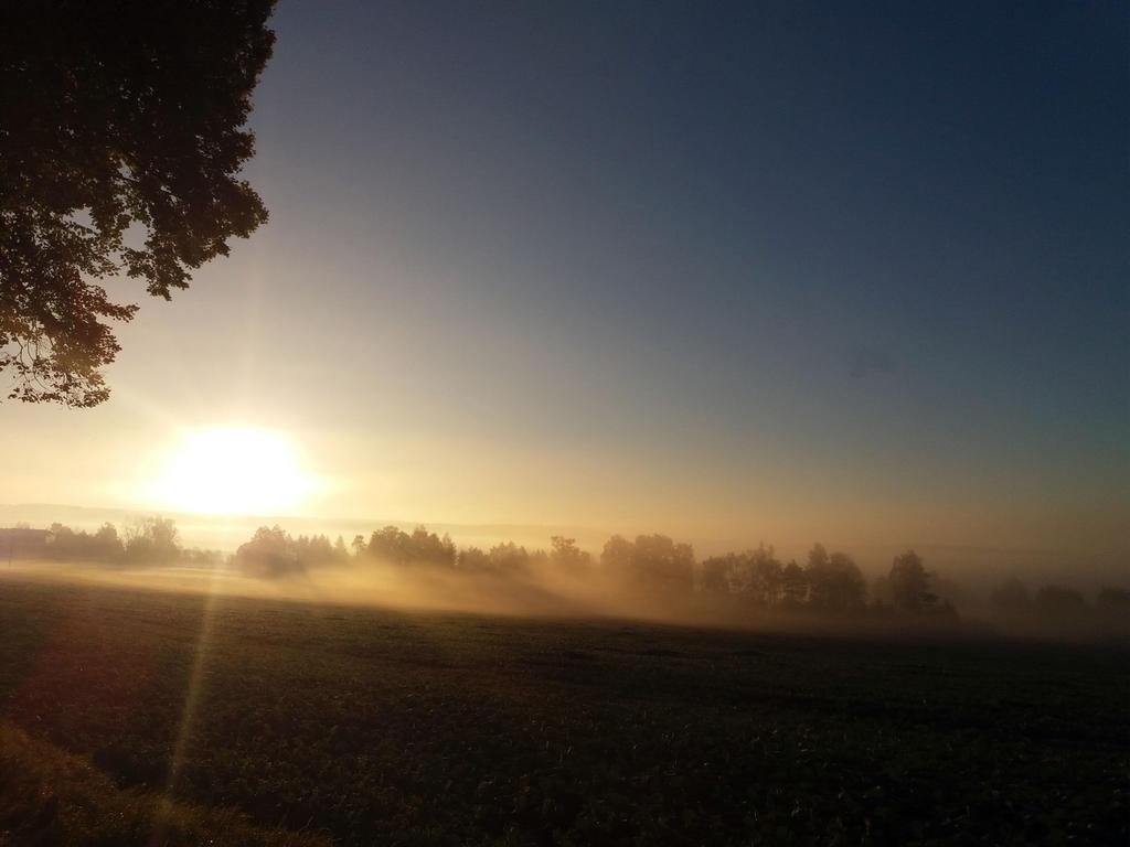 Autumn morning by Selena-E-S
