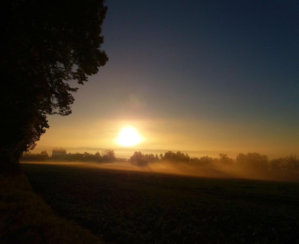Autumn morning II. by Selena-E-S