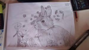 Rabbit 3 by Derek990
