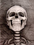 Skeletal Portrait