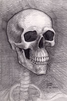 Skull 10-30-2012 by myconius