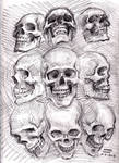 Skull sketch 5-31-2013