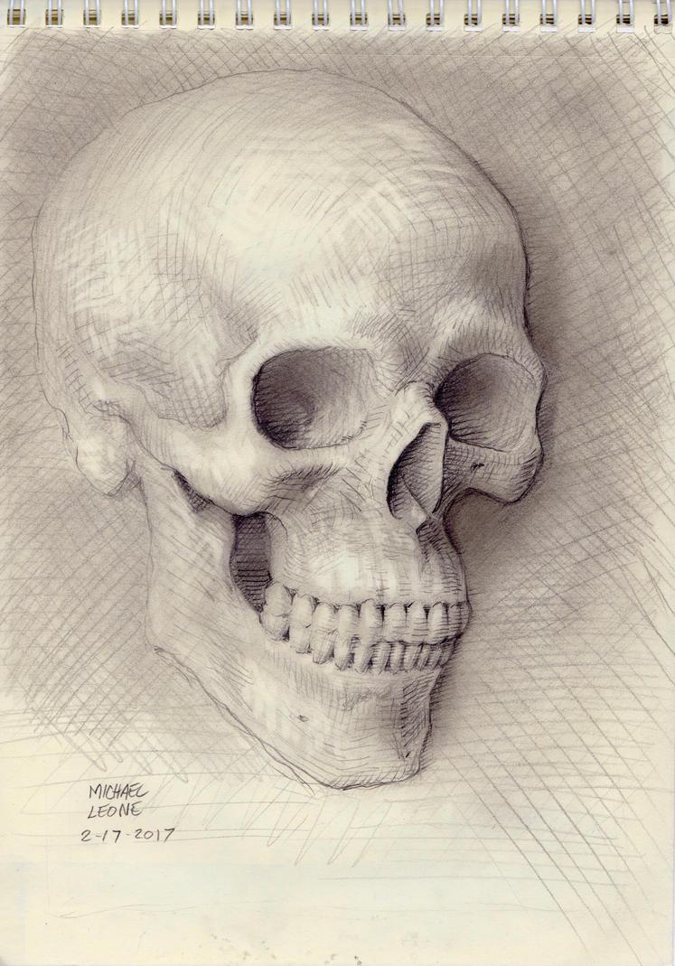 Skull portrait 2-17-2017 by myconius