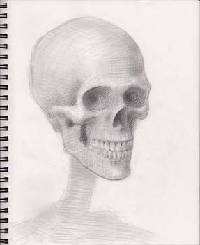 Skull 2018 WIP 5