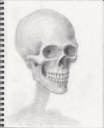 Skull 2018 WIP 6 by myconius