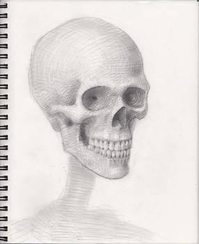 Skull 2018 WIP 6
