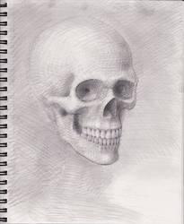 Skull 2018 WIP 7 by myconius