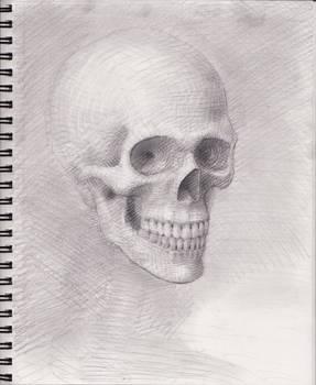 Skull 2018 WIP 7