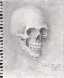 Skull 2018 WIP 8 by myconius