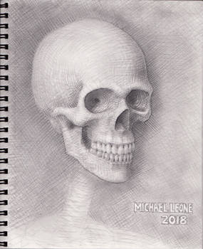 Skull 2018 WIP 9