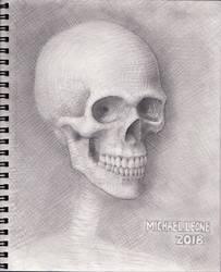 Skull 2018 WIP 9 by myconius