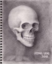 Skull 2018 WIP 10 by myconius