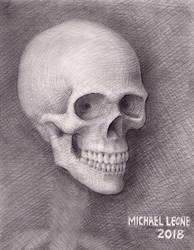My last skull drawing of 2018 by myconius