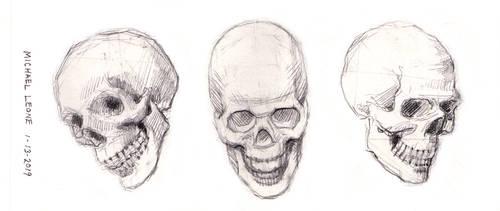 Skulls 1-13-2019 1 by myconius