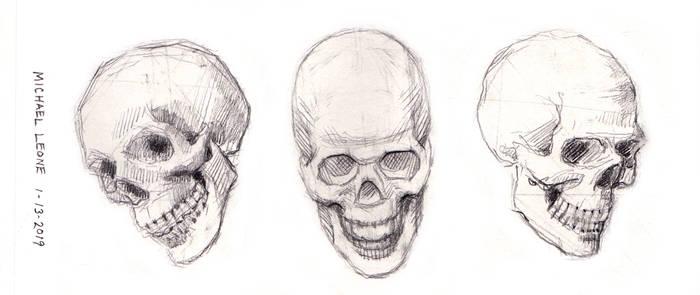 Skulls 1-13-2019 1