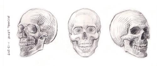 Skulls 1-13-2019 2 by myconius