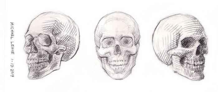 Skulls 1-13-2019 2