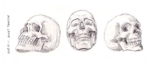 Skulls 1-13-2019 3 by myconius