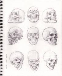 Skulls 1-13-2019 by myconius