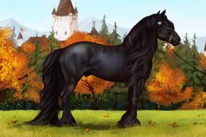 Black Beauty. by Memuii