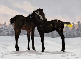 Winter Foals by Memuii