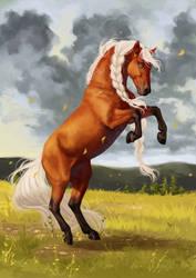 She stood in the wind... by Memuii