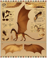 [WoC - ref. sheet] Ray by Memuii