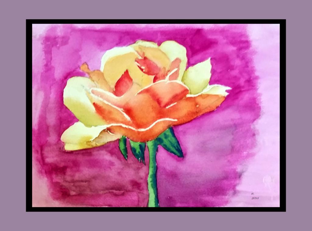 Orange-Rose.2015-05-20 by muridaee