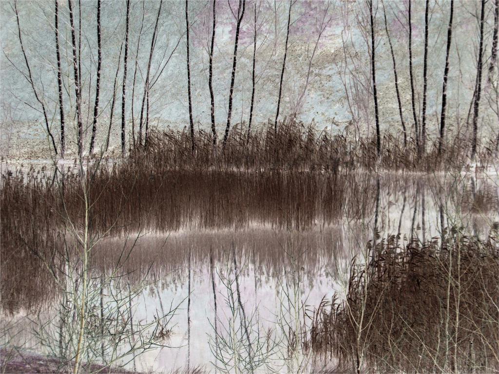 Rieulay-Les Argales by April-Mo