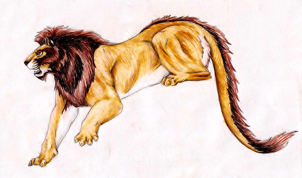 Nemean lion drawing - photo#20