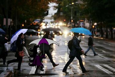 A Walk in the Rain.... by VicMartinezJr