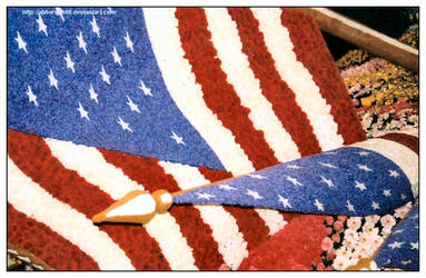 05 America Photography Entry 1 by TheV-A-D-A